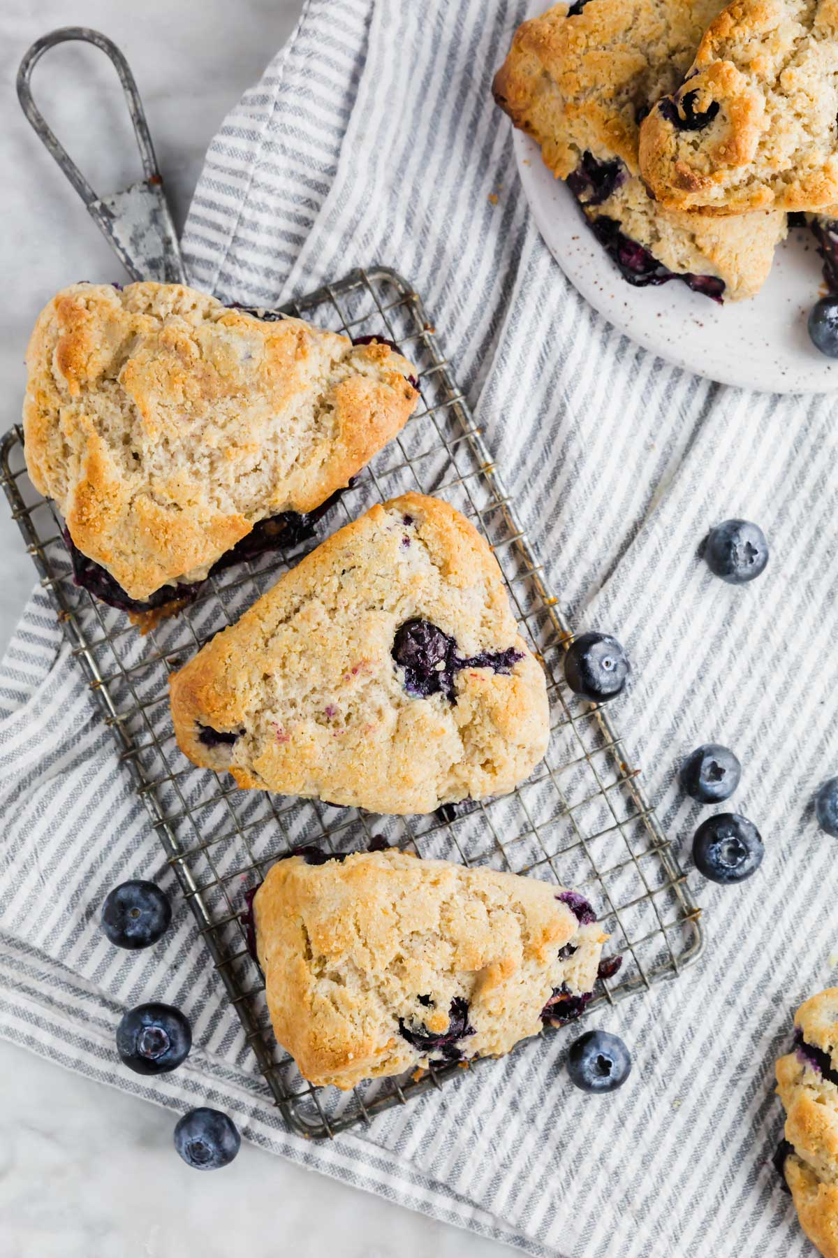 An aerial view of three gluten-free blueberry scones on a drying rack with fresh blueberries surrounding it.