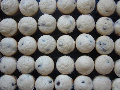 Three dozen mini chocolate chip muffins lined up.