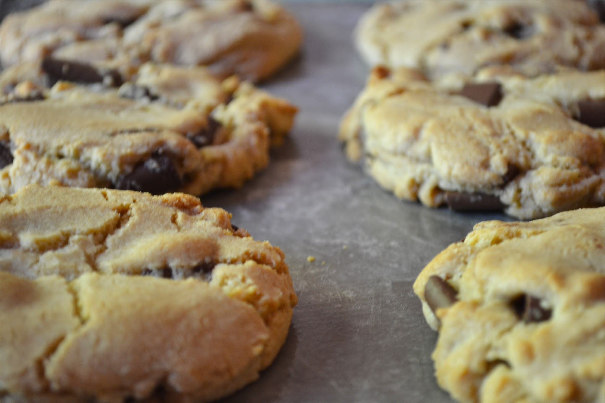 Irresistible Chocolate Chip Cookies - A Dash of Megnut