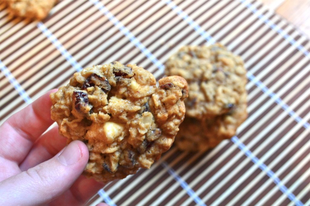 A hand holding a white chocolate cranberry oatmeal cookie.