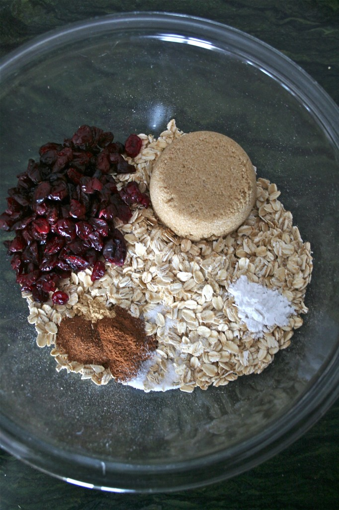 A mixing bowl with oats, cinnamon, baking powder, salt, brown sugar, and dried cranberries.