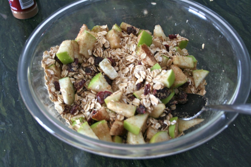 A bowl of apples, oats, cinnamon and dried cranberries.
