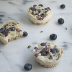 Vegan Blueberry and Basil Cheesecake (GF, V, DF, RSF) - A Dash of Megnut