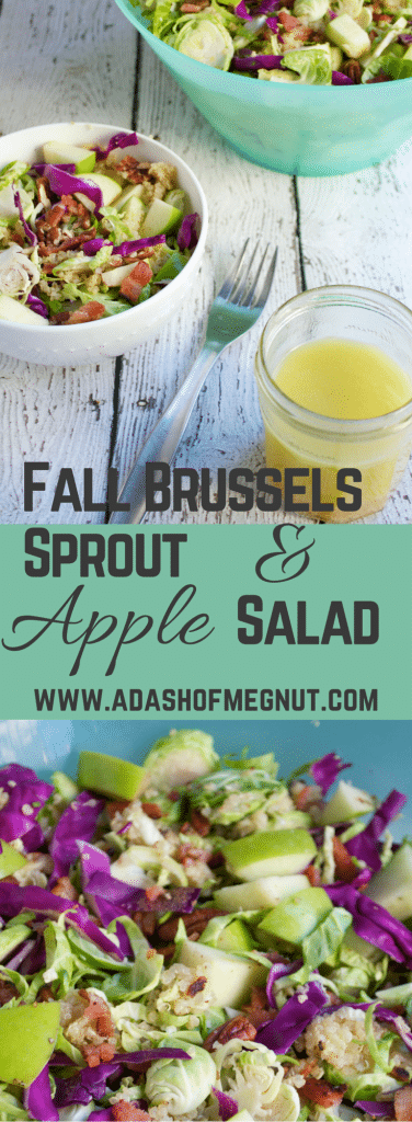 Fall Brussels Sprout and Apple Salad (GF, DF, RSF) - A Dash of Megnut