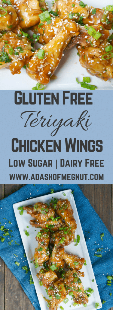 Teriyaki Chicken Wings (GF, DF, RSF) - A Dash of Megnut