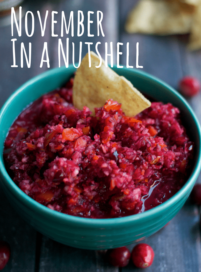 November In a Nutshell - 10+ Gluten-Free Recipes including chicken tortilla soup, cranberry salsa, sweet potato biscuits and MORE!