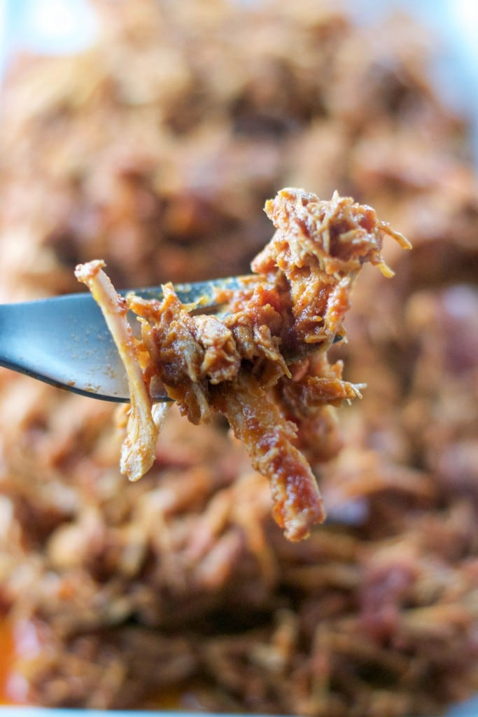Crock Pot Shredded Pork in a Apple BBQ Sauce (GF, DF) - A Dash of Megnut