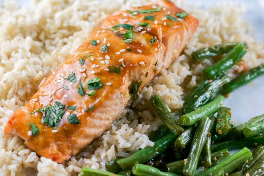 Teriyaki Salmon (GF, DF) - A Dash of Megnut