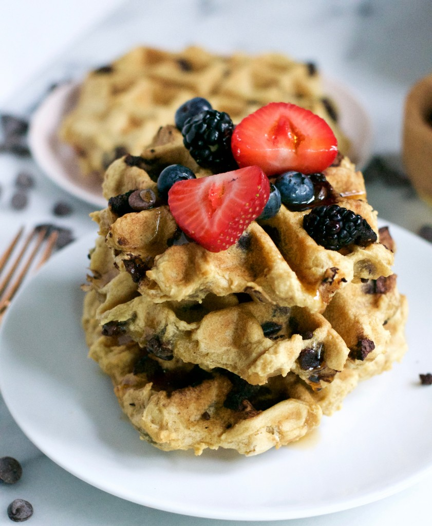 Gluten-Free Vegan Sparkling Water Waffles (Gf, DF, V) - A Dash of Megnut