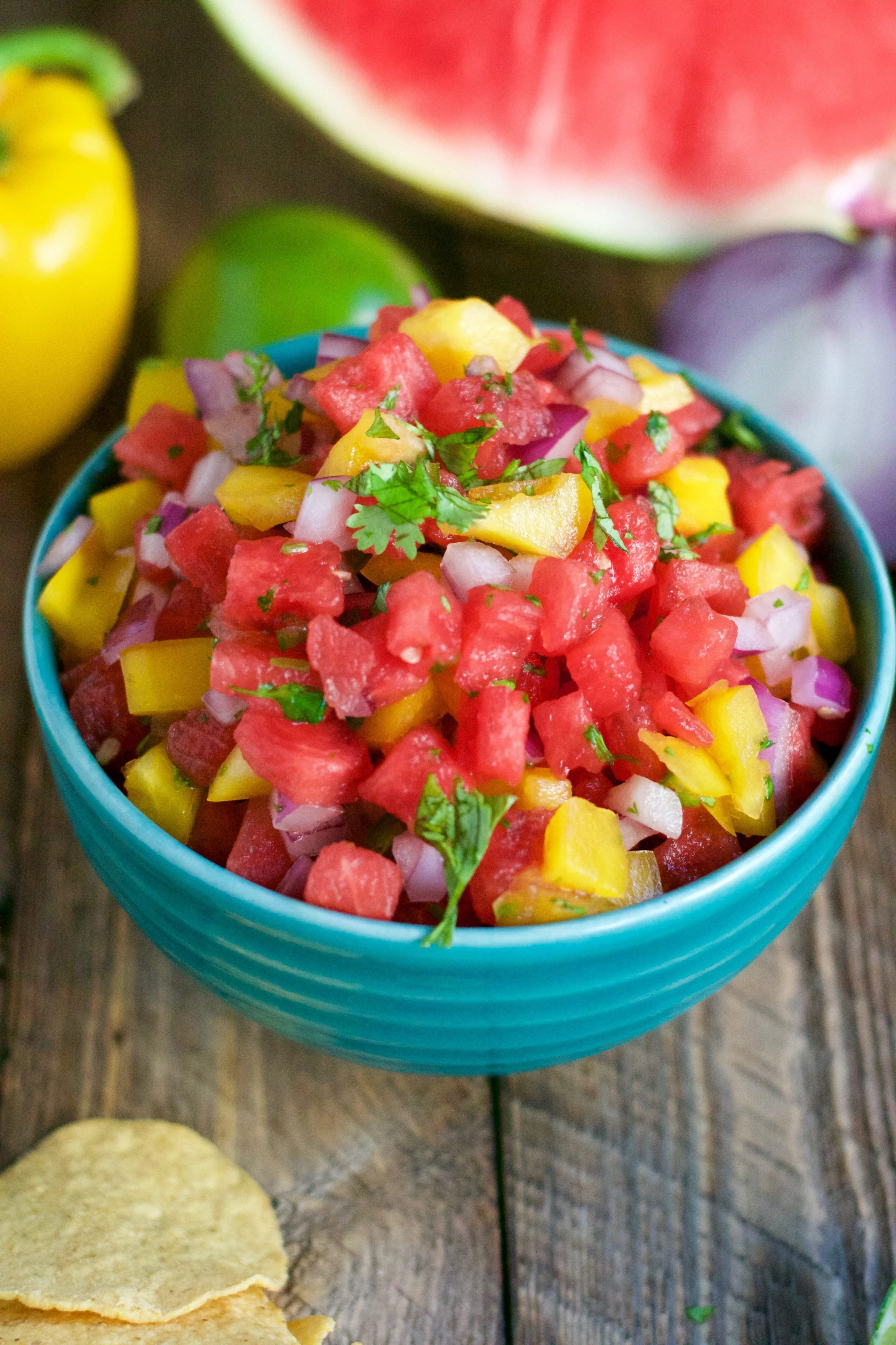 Watermelon Salsa (GF, DF, V) - A Dash of Megnut