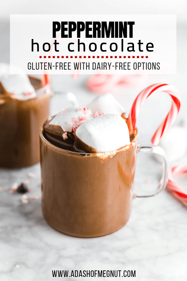 Peppermint Hot Chocolate - A Dash of Megnut - Gluten-Free with Dairy-Free and Vegan Options!