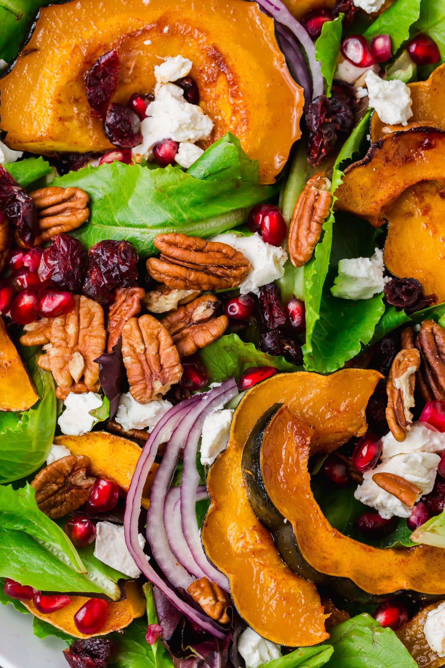 An overhead shot of a fall salad with goat cheese, pecans, pomegranate, red onion and acorn squash.